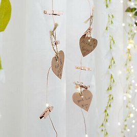 2m Battery Indoor Copper Wire Firefly LED Fairy Lights with Rose Gold Photo Pegs