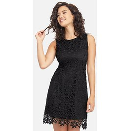 Allover Sleeveless Lace Dress