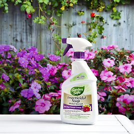 Garden Safe Brand Insecticidal Soap Insect Killer, Ready-to-Use, 24-Ounce