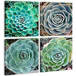 Green Succulents Plants Canvas Wall Art Painting for Bathroom Living Room Decor