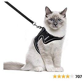 Rabbitgoo Cat Harness and Leash for Walking, Escape-Proof No Choke Reflective Vest Harnesses for Small Cats, Kitten Harness with Magic Tapes and Double Clips for Kitty Safety Outdoor Activity