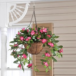 Hanging Baskets BUY 2 ITEMS GET $5 OFF EACH - MIX & MATCH