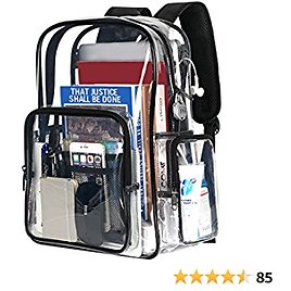 Clear Backpack, 15.6 Inch Transparent Bookbag with Lock for Girls Women Gifts