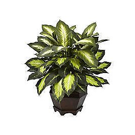 Up To 50% Off Artificial Plant | Bed Bath & Beyond