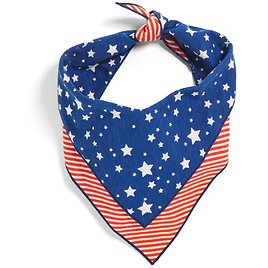 YOULY The Citizen Americana Collection USA Star & Striped Dog Bandana, Large/X-Large | Petco
