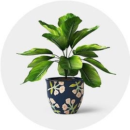Planters From $2.39 - Target