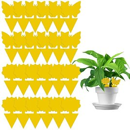 Double-Sided Flying Insect Yellow Sticky Trap