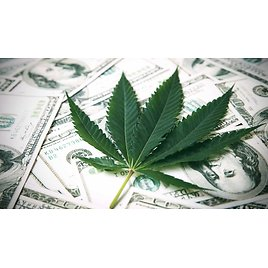 Get Paid to Smoke Weed? California Company Looking for Intern to Test Cannabis, Eat Edibles for 3 Months