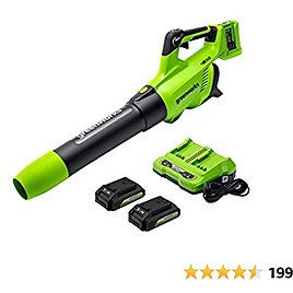 Greenworks 2 X 24V Battery Powered Axial Cordless Electric Leaf Blower