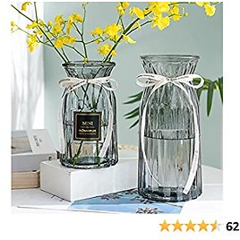 XILEI Glass Vase for Flower Home Decoration, Desk Placement or Gift Grey Vase 2 Pieces (A1)