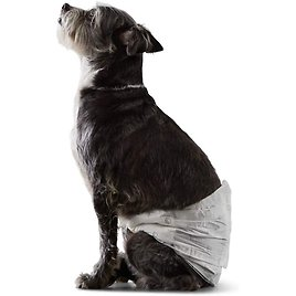 Amazon Basics Male Dog Wrap, Disposable Diapers - Pack of 30
