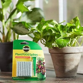 Miracle-Gro Indoor Plant Food, 24-Spikes $2.99