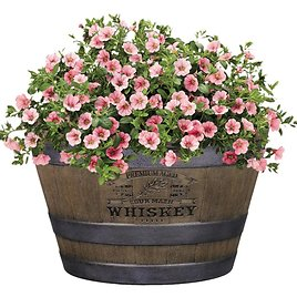 Style Selections Whiskey Barrel Brown Resin Planter