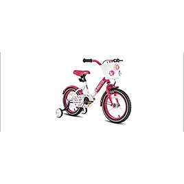 Joystar Starry Kids Bike with Training Wheels and Fenders from Amazon.com