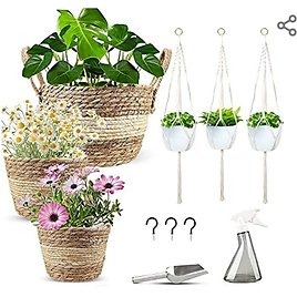 3 Sets of Natural Seagrass Basket Planters from Amazon.