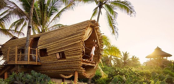11 Magical Treehouses in 11 Countries