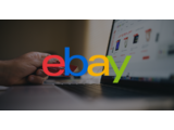 eBay Launches Price Match Guarantee: Can eBay Win Black Friday vs Walmart & Amazon?