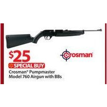Crosman® Pumpmaster Model 760 Airgun with BBs