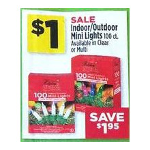 Indoor/Outdoor 100-ct. Mini Lights (Multi)