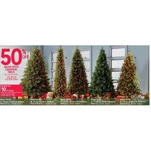 Jaclyn Smith 6.5-ft. Carolina Spruce