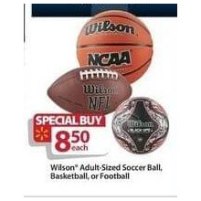 Wilson Adult-Sized Basketball
