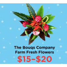 $15-$20 The Bouqs Company Farm Fresh Flowers