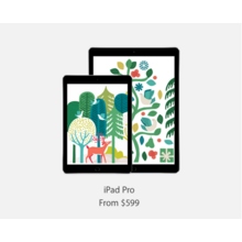 iPad Pro with Free Gift Card