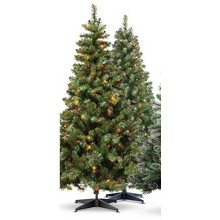 Windershop 6' Pre-Lit Alberta Spruce Artificial Tree, Clear or Multicolor Lights