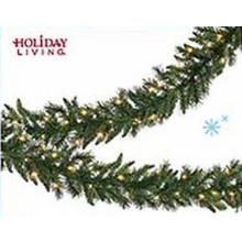 Holiday Living Indoor/Outdoor Pre-lit 9-ft. Colorado Pine Garland w/ White Incandescent Lights Lights